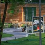 golf15.jpg