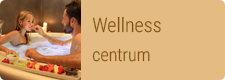 Wellness Chateau St. Havel